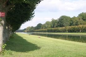 Parco di Fontainebleau
