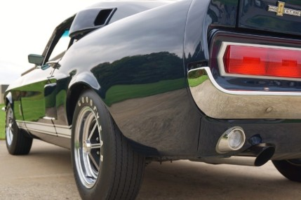 Shelby GT500 (19)